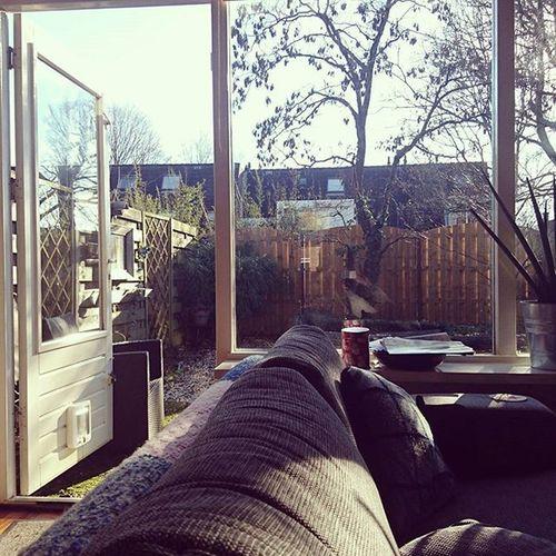 Gotta love Globalwarming .. 25th of januari and the Gardendoor is open 👌