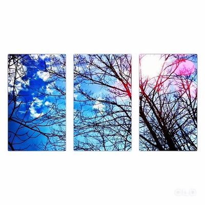 triptych. Check This Out Hello World Taking Photos Enjoying Life Blue Sky Nature Clouds Nature_collection Trees Beauty Triptych Artsy IPhoneography Showcase: February