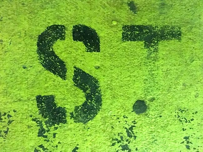 Art Backgrounds Close-up Day Focus On Shadow Full Frame Green Green Color Growth Letter S Letter T Letters No People Outdoors Stencil Typography