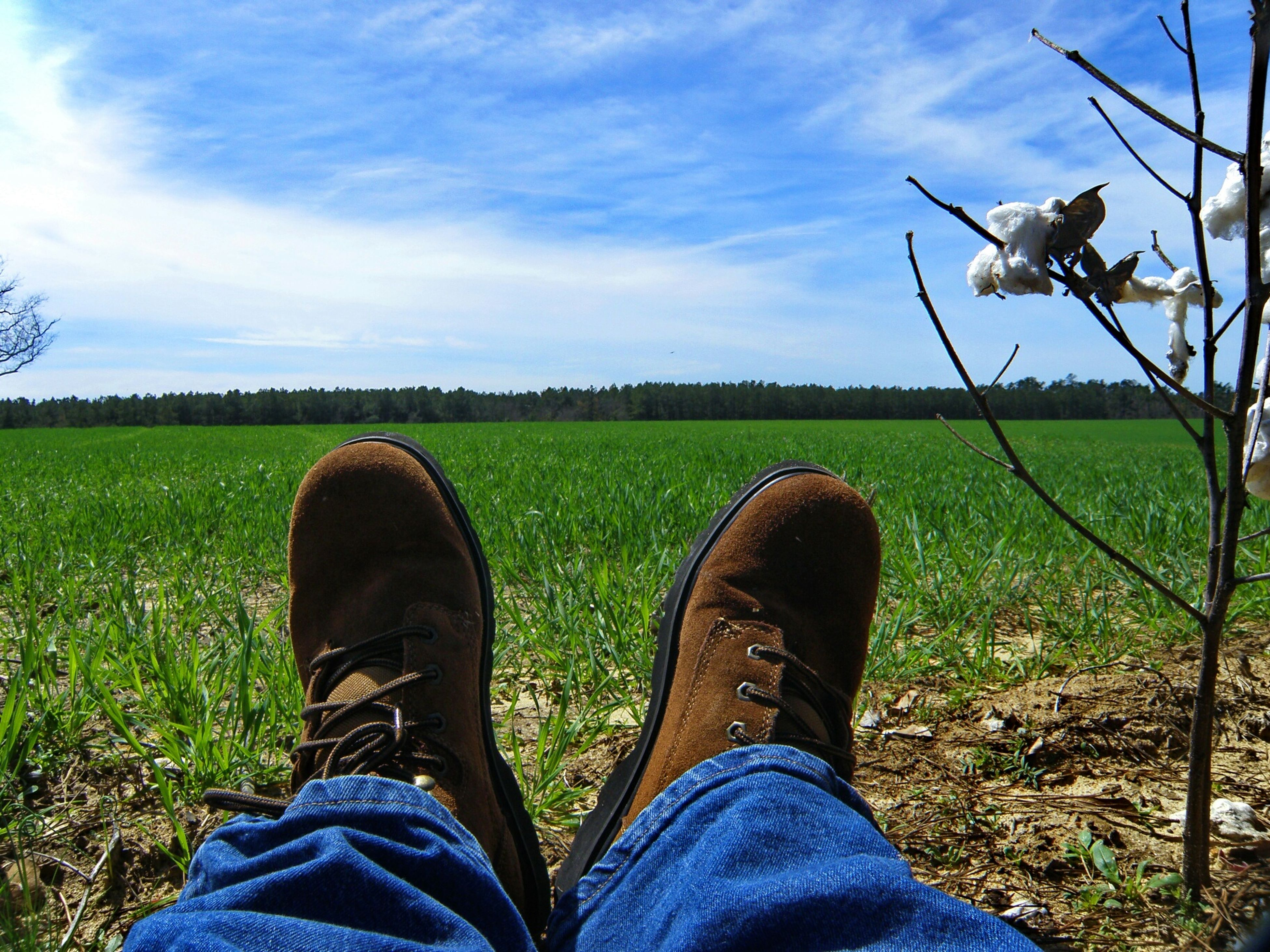 low section, person, shoe, personal perspective, field, jeans, grass, human foot, footwear, standing, men, lifestyles, grassy, leisure activity, landscape, sky, blue