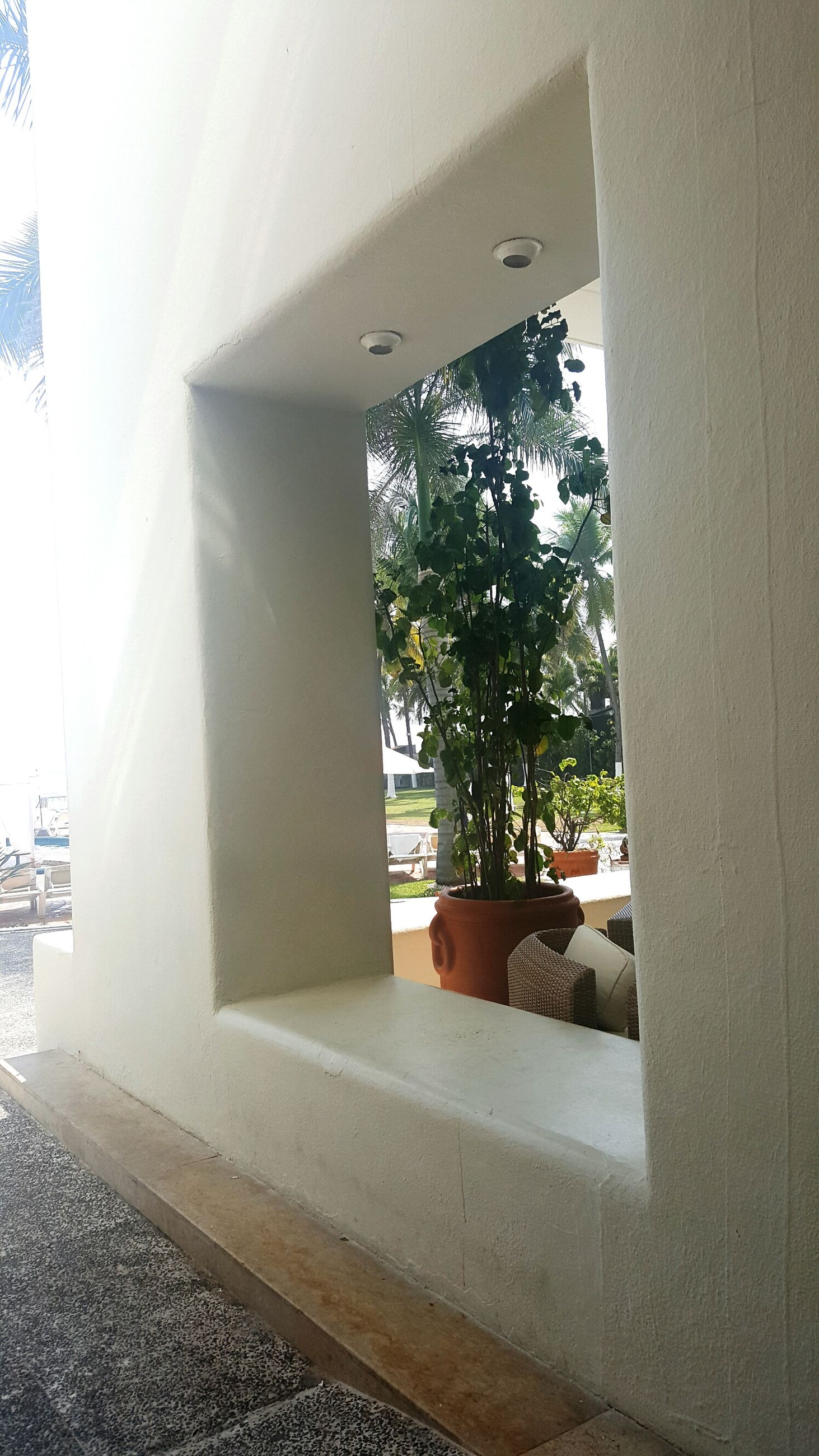 indoors, architecture, built structure, window, building exterior, sunlight, tree, wall - building feature, building, house, day, home interior, door, glass - material, shadow, empty, wall, entrance, absence, no people