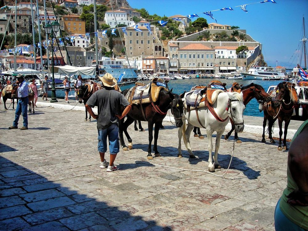 Horse Mobile Conversations Mobilephotography Enjoying Life Tranquility Architecture GREECE ♥♥ Ýdra, Greece Travel Destinations Sea View Sailboat Blue Water Sea
