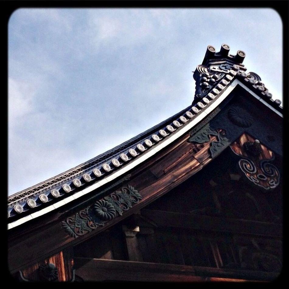 清浄華院 大殿・屋根と装飾 The Purist (no Edit, No Filter) Taking Photos Temple Roof