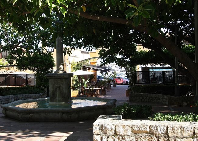 Architecture City Cityscapes Fine Art Photography Fountain Green Color Growth Hidden Gems  Holiday Light And Shadow Mallorca Nature Park Puerto Portals Relaxing SPAIN Stone Wall Streetphotography Sun Taking Photos The Way Forward Travel Tree Urban Wineandmore