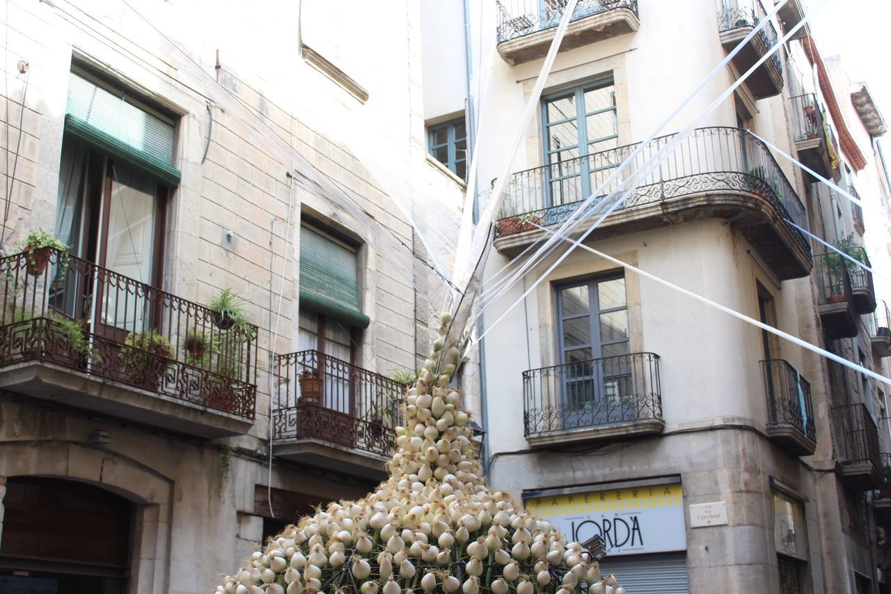 Visual Feast Building Exterior Architecture Low Angle View Built Structure Window Residential Building House No People Balcony Outdoors Day Ivy Tree Gironamenamora Girona Temps De Flors 2017 Girona