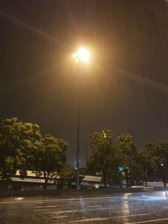 Night Street Light Tree Roads Raining Rainy Night Strom