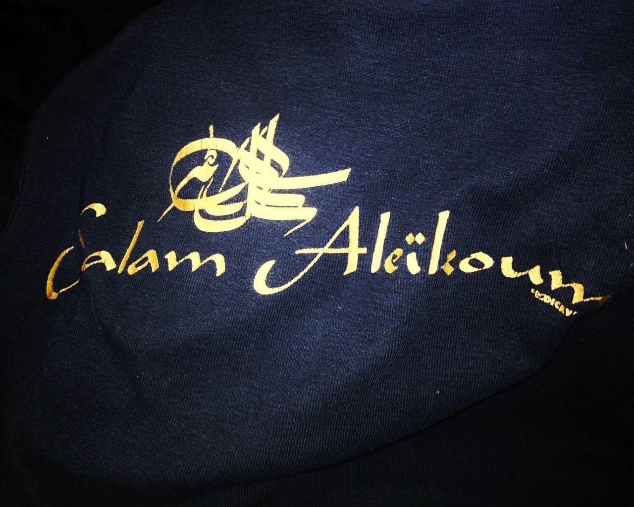 Promener un Staffie Bleu la nuit en portant un t-shirt de la tournée 1995 d'Assassin, mmmmh, à priori ce n'est pas ce soir qu'on va venir m'importuner XXXX Nouslesgentils Lhabitnefaitpaslemoine Ilovemydog