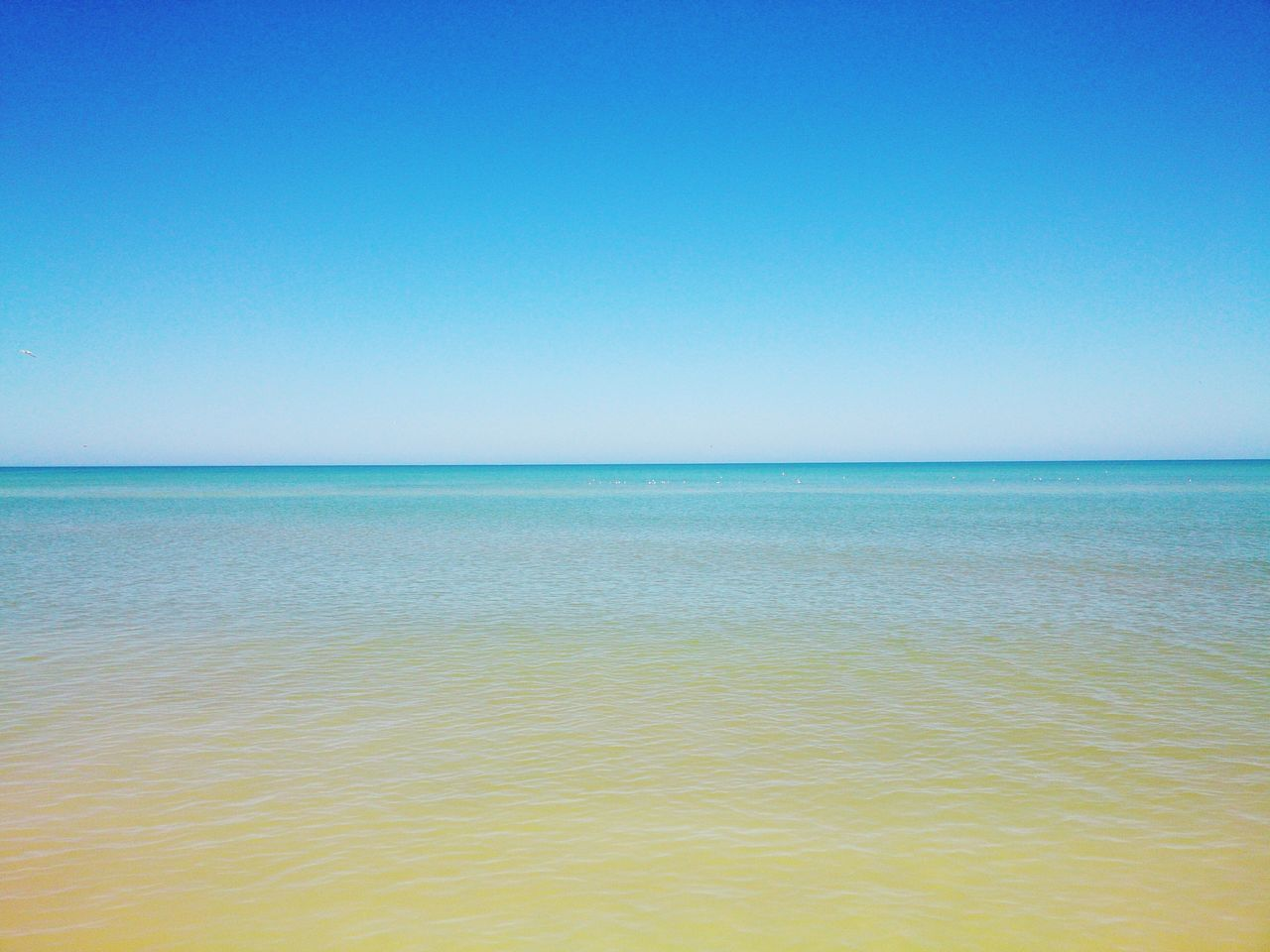 Straight line. Yucatan Mexico No People Blue Sky Beauty In Nature Landscape Mobile Photography Xperia ZL Seascape Sea And Sky Beach Photography Day Nature Amazing Beach Betterlandscapes