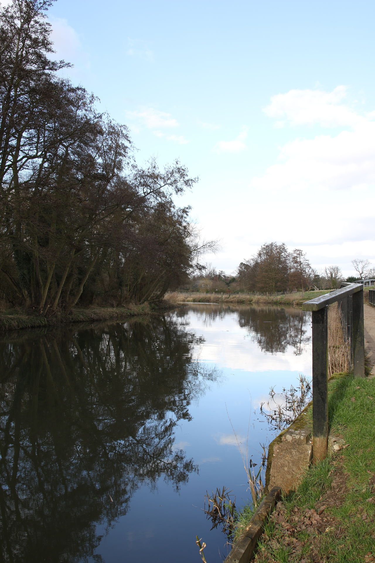 Beauty In Nature Bridge Day Growth Nature No People Outdoors Railing Reflection River River Wey Scenics Sky Sky And Clouds Surrey Countryside Tranquil Scene Tranquility Tree Water