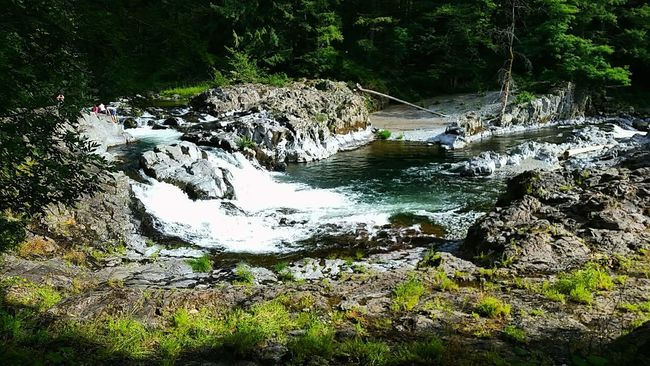 Lucia Falls Washington State Lucia Falls Nature Water Falls Hiking