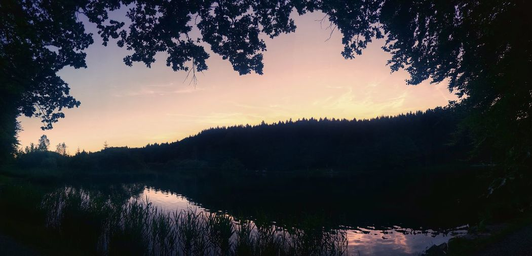 Sleep well! 😴Sunset Tree Nature Scenics No People Outdoors Beauty In Nature Landscape Lake Water Forest Mountain Day Sky Deininger Weiher Germany Live For The Story The Great Outdoors - 2017 EyeEm Awards