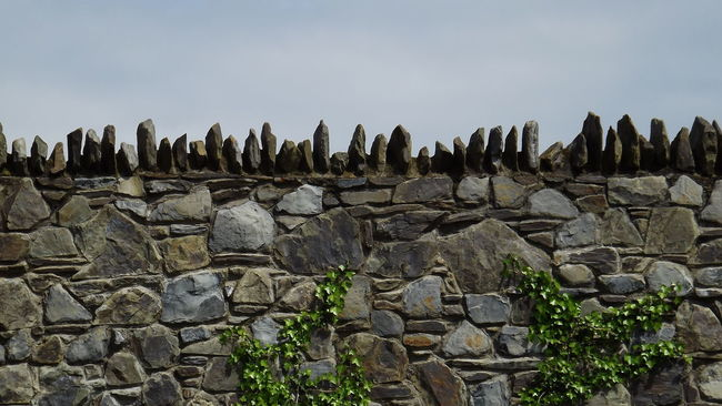 Bindweed Columns Different Ways Eye4photography  EyeEm Best Shots EyeEm Gallery Geometry Hello World ✌ My Point Of View Nature No People Outdoors Plant Rural Scene Show Case May Sky Stone Stone Wall Taking Photos Tranquil Scene