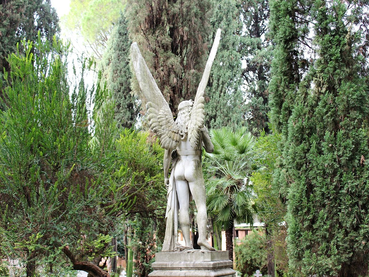 Tree Art And Craft Sculpture Statue Growth Nature Human Representation No People Low Angle View Green Color Beauty In Nature Outdoors Day Religion Angel Wings Wings Angel Taking Photos Rome, Italy EyeEm VSCO Monument Religious Architecture Faith Humility