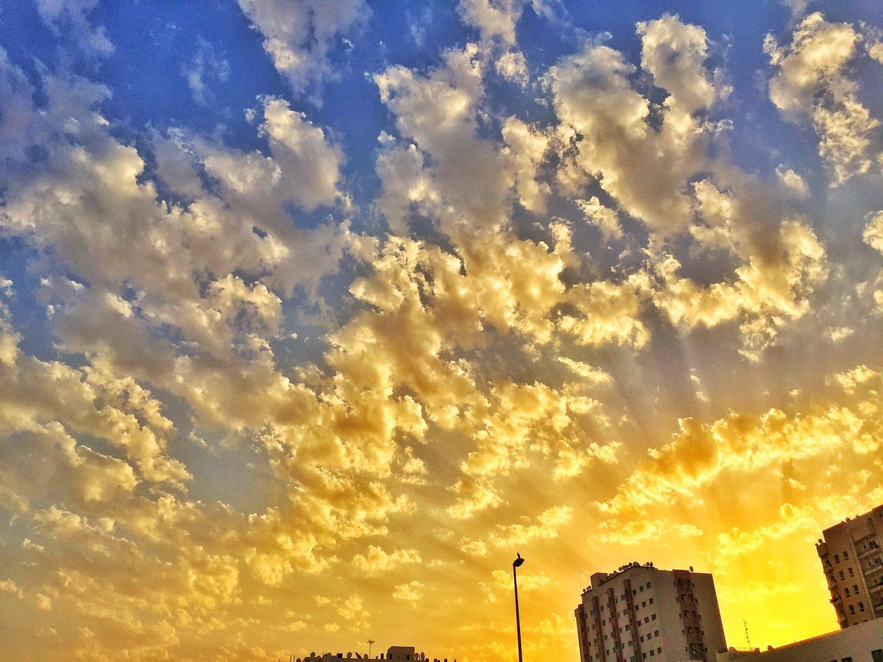 Fine Art Photography sky Morning morning light Light sky Rays sunrise Sun bright Golden Horizon dubai Layers And Colors Warmth Scenic IPhone Photography IPhoneography Capture Angle Amazing View Bright Highlights Composition Morning Brilliant Clouds Photography
