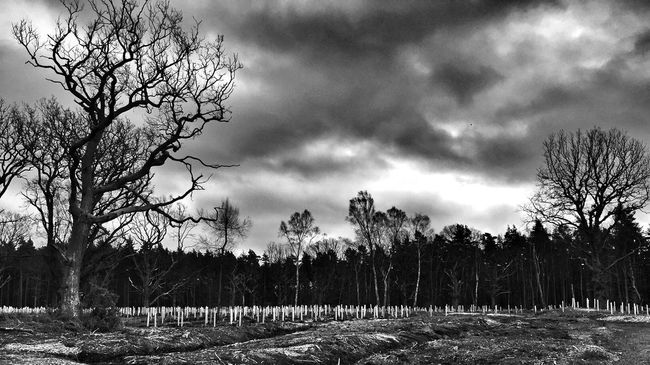 Clouds And Sky Blackandwhite Landscape Nature_collection