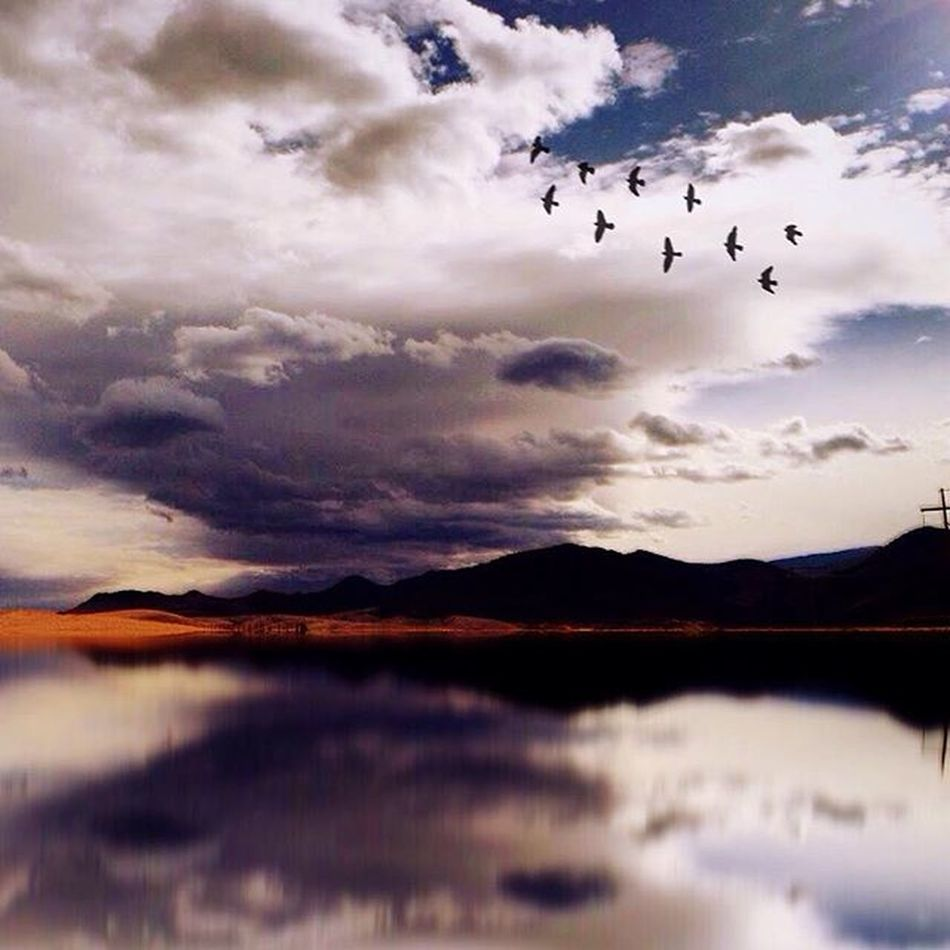 There are some things you can only learn in a storm... Storm Birds Landscape Lake Reflection Clouds Montana Youhadtobethere