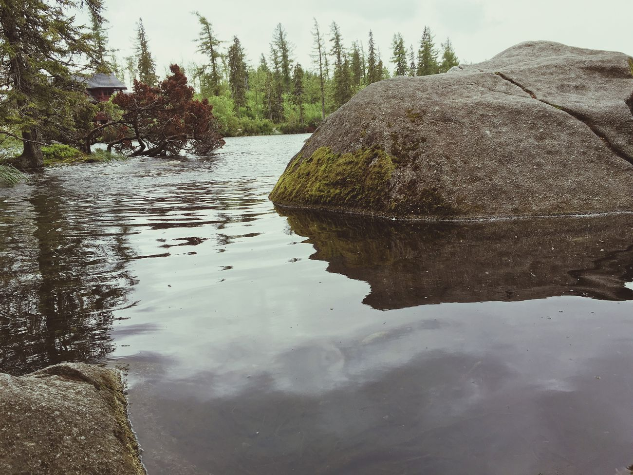Stones Stone Water Strbske Pleso Tatry-Slovakia First Eyeem Photo Makro Nature_collection Iphoneonly