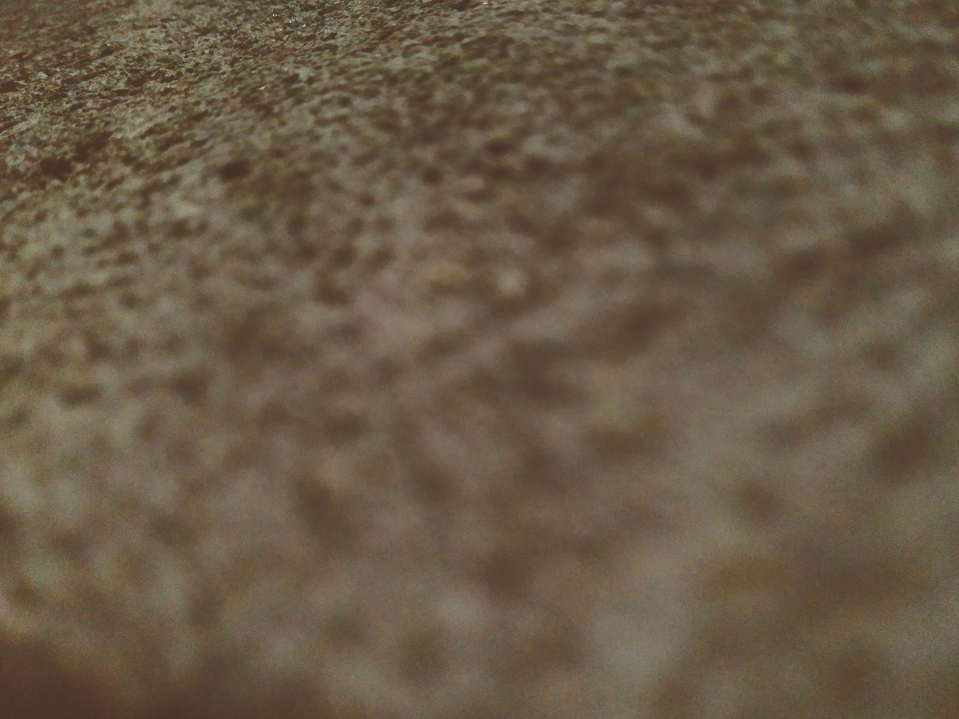 full frame, backgrounds, textured, pattern, close-up, sand, high angle view, beach, selective focus, no people, day, outdoors, detail, design, brown, sunlight, nature, still life, natural pattern