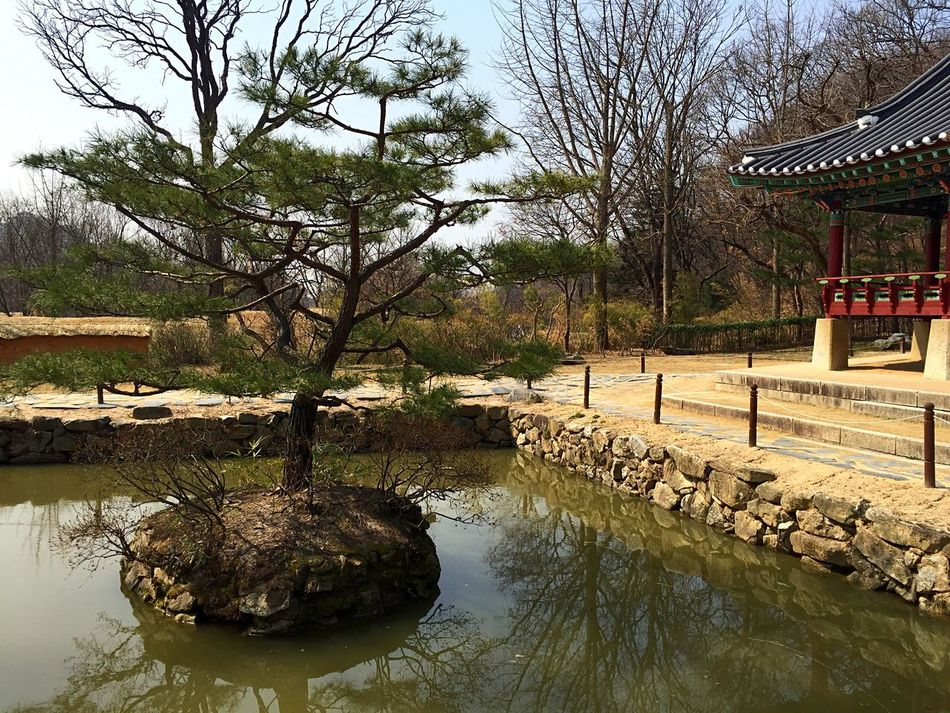 Relaxing place... Stunning Collection Travel Photography Traveling Traveling In Korea IPhoneography Seoul, Korea EyeEm Korea Monastery Tree Pavilon Relaxing Backgrounds Background