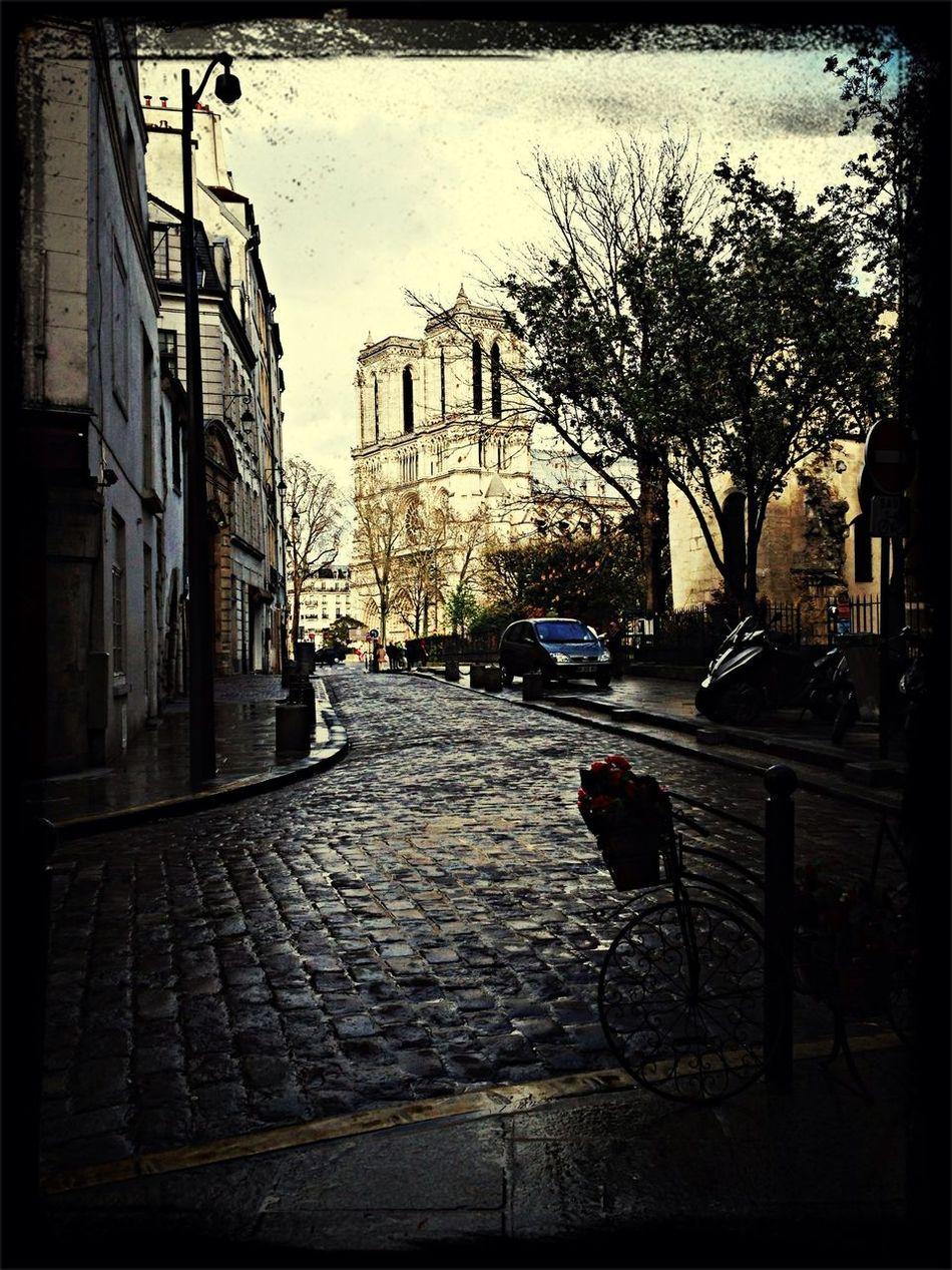 Notre-Dame || Paris || ?