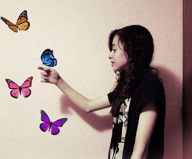 My Edit Butterfly