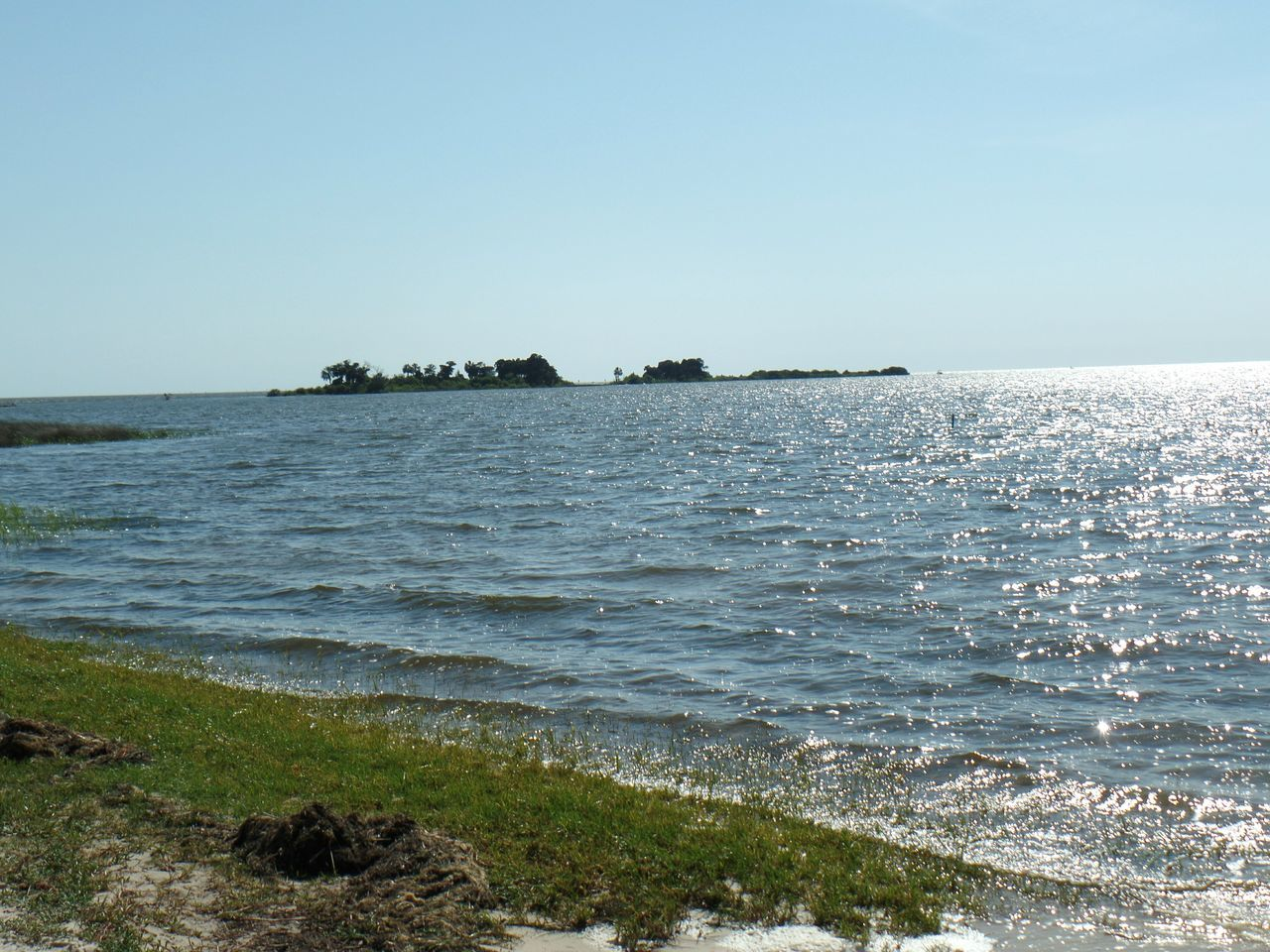 Nature Oceanview Yankeetown Fl Eye4photography  Check This Out MyPics Natural Beauty Naturephotography Spring2016 Naturelovers Awesome Floridaliving  Checkthis Out Florida Nature FloridaCarmenVazquezPhotography Florida Life Mothers Day Beautiful Day Florida Skies Floridafishing Nature Photography Taking Pictures NiceShot