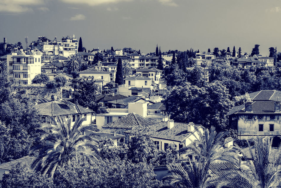 Antalya cityscape. Turkish resort Antalya Turkey Architecture ASIA Black And White City Cityscape Houses Landscape Middle East Nature Outdoors Palm Trees Rooftops Scenery Sky South Summer Toned Image Tourism Town Travel Destinations Tropical Climate Turkey Turkish Riviera Urban Landscape