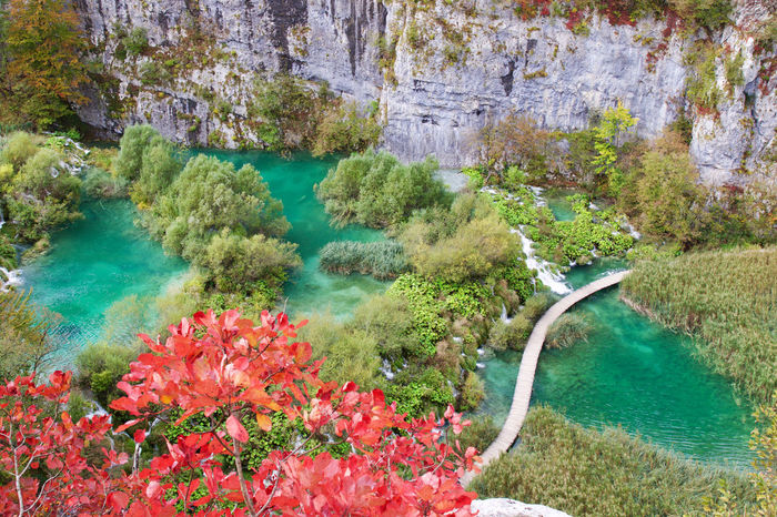Plitvice Lakes National Park Beauty In Nature Croatia EyeEm Nature Lover High Angle View Landscape Landscape_Collection Landscape_photography Lush - Description Multi Colored My Year My View Nature Nature Nature Photography Nature_collection Naturelovers Plitvice National Park Scenics Tranquility Travel Travel Destinations Travel Photography Water Water Reflections Waterfront Finding New Frontiers Miles Away