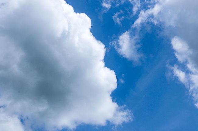 Abstract Backgrounds Beauty In Nature Blue Cloud - Sky Cloudscape Cumulus Cloud Day Environment Fluffy Heaven Horizontal Low Angle View Nature No People Outdoors Scenics Sky Sky Only Tranquility Weather