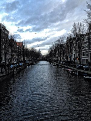 Amsterdam by Bruno