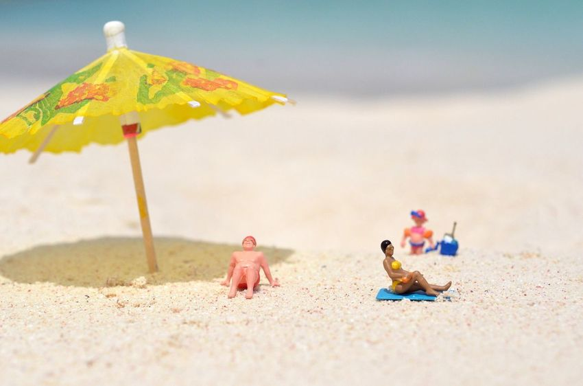 EyeEm Selects Toy Sand Beach Day No People Focus On Foreground Close-up Sunlight Outdoors Nature Animal Themes Beauty In Nature Caribbean Turks And Caicos Islands Turksandcaicos Backgrounds