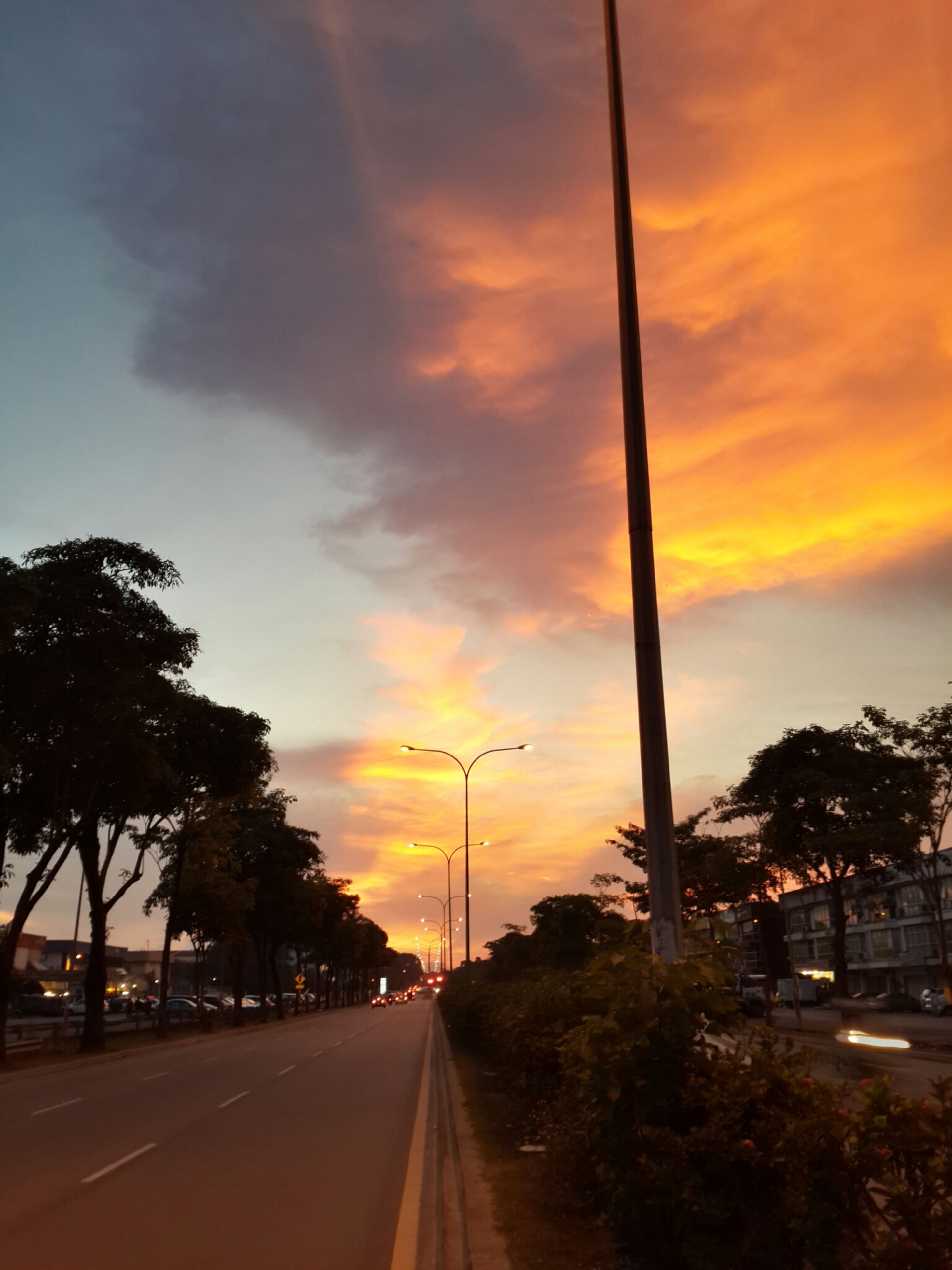 sunset, transportation, the way forward, road, sky, tree, cloud - sky, street, diminishing perspective, orange color, street light, car, road marking, cloudy, vanishing point, building exterior, cloud, land vehicle, built structure, architecture