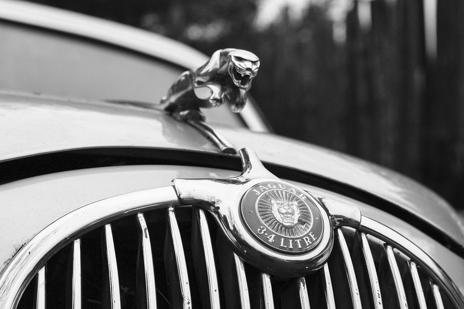 """""""Lost Metal Souls"""" part5 Lost Metal Souls Eye4photography  EyeEm Best Shots - Black + White Ladyphotographerofthemonth Vintage Cars Getting Inspired Monochrome Bnw_junkie Old Car Junkie Black And White"""