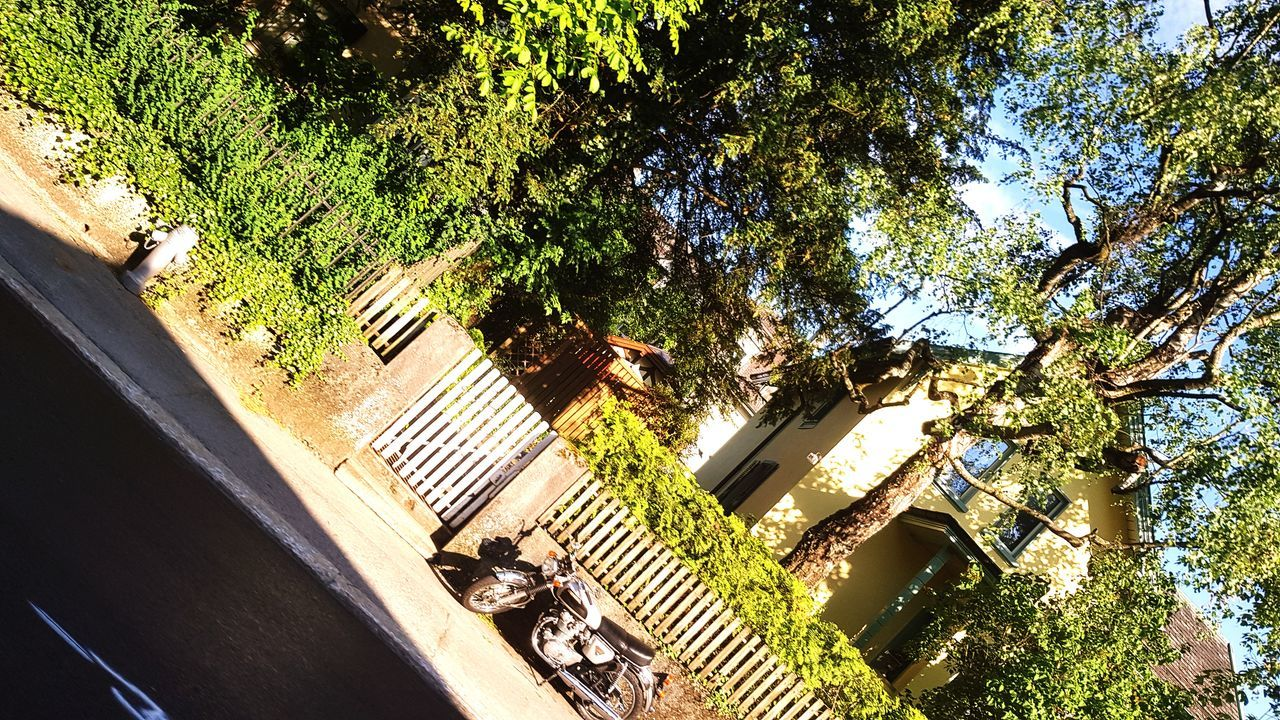Perspective & shadow Day Tree Outdoors Sunlight No People Nature Architecture Sky Shadow Sunlight EyeEmNewHere Motorcycle Photography Motorcyle Old Motorbike Old Motorcycle
