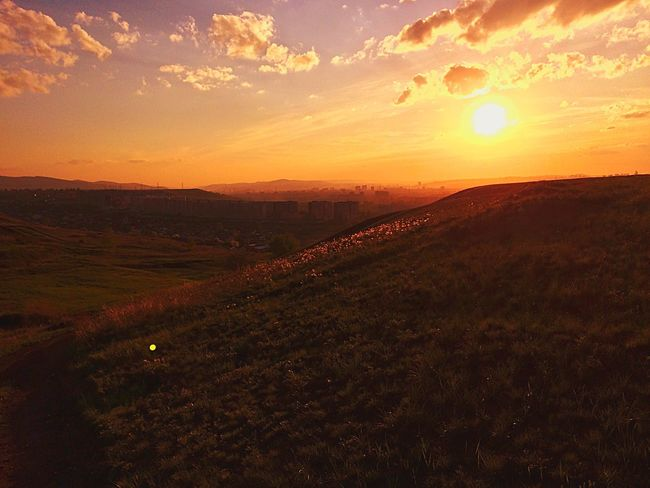 sunset Landscape Nature Plant No People