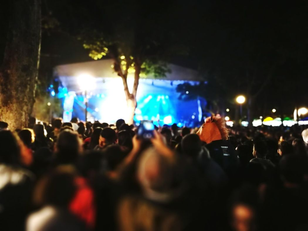 Performance Music Crowd Audience Stage - Performance Space Music Festival Large Group Of People Arts Culture And Entertainment Performing Arts Event Spectator Night People Nightlife Fan - Enthusiast Stage Light Live Event Popular Music Concert Masked Man Masked People, Disguise Mask Horse Mask