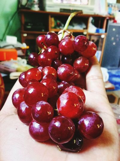 Human Body Part Human Hand Fruit Food And Drink Healthy Eating One Person People Food Close-up Healthy Lifestyle Freshness Red Holding Indoors  Lifestyles Adult Real People Adults Only Day Only Women