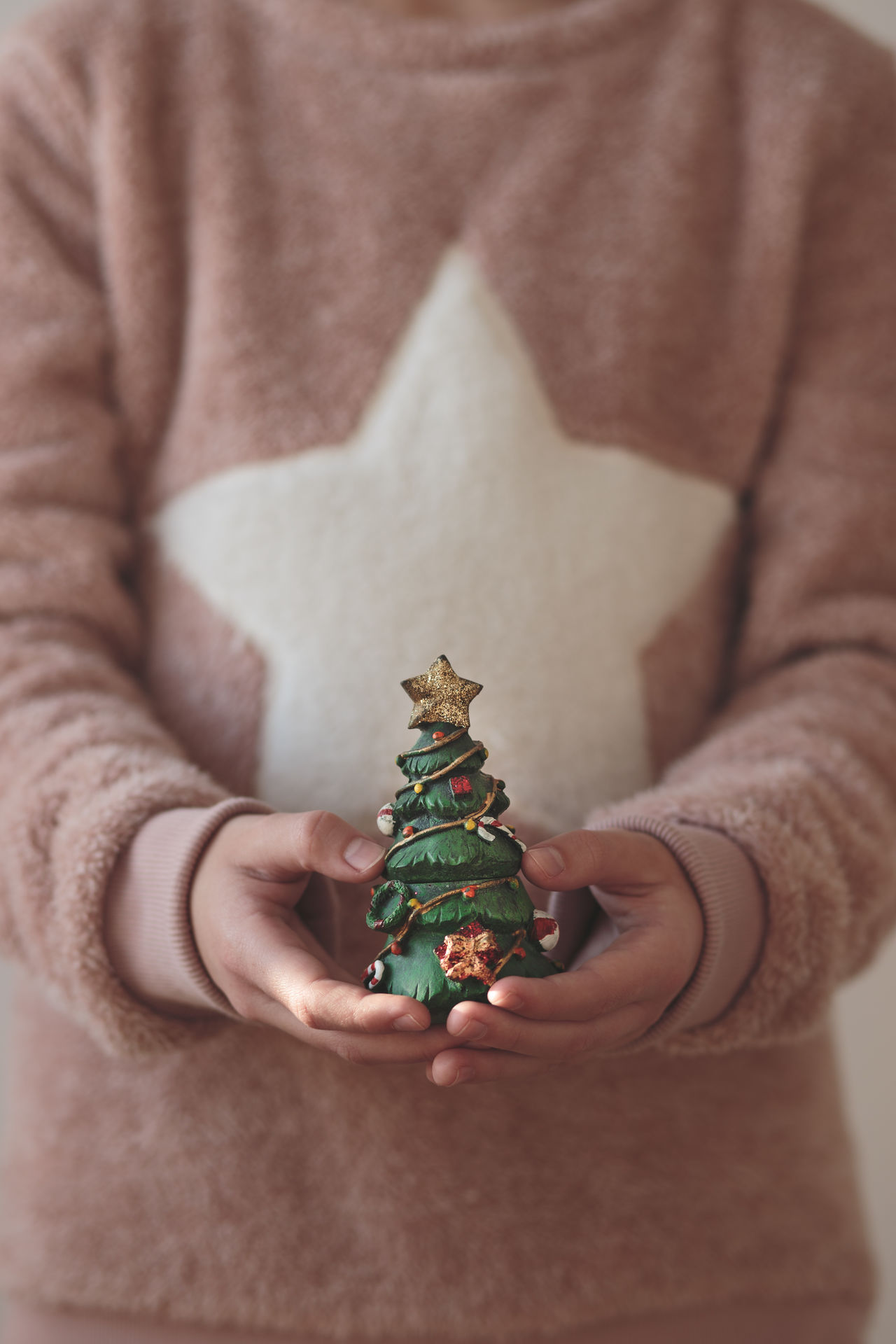 Girl wearing warm sweater holding Christmas tree figure Anonymous Celebration Childhood Christmas Christmastime Close-up Decoration Figure Girl Holding Holiday Idea Lifestyles One Person Simple Sweater Tradition Tree Vertical