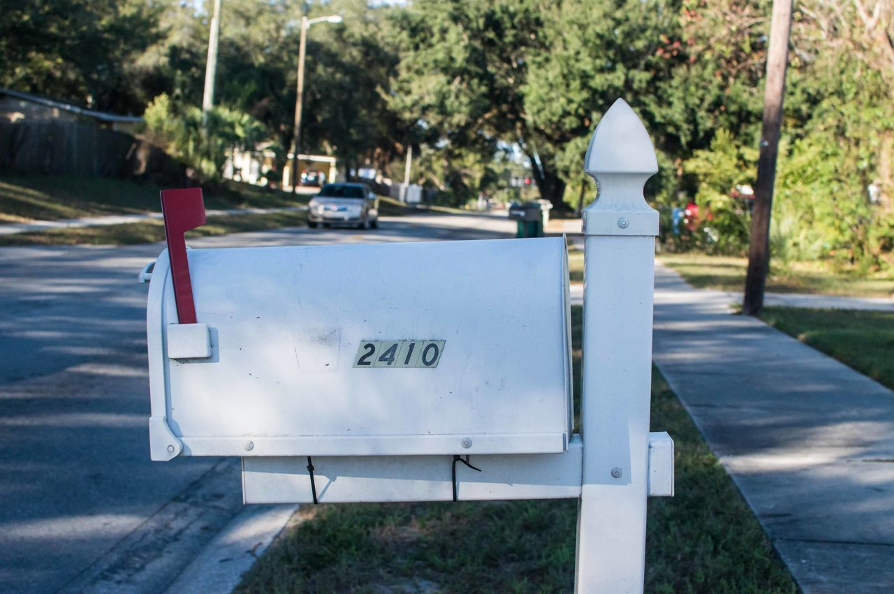 American Day Mail Mailbox No People Outdoors Text Tree