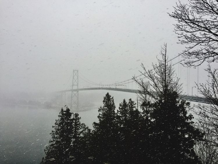 Snowy Vancouver Canada Tree Outdoors Day Bridge - Man Made Structure Water Architecture Snowy Mistic Place Winter Bridge In Fog