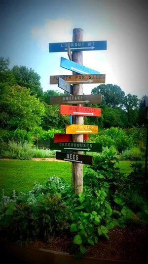 Chattanooga Color Crabtree Farm Directional Signs Signs Tennessee This Way