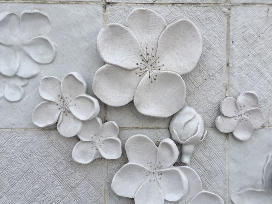No People Close-up Indoors  Nature Day Backgrounds Pattern Wall Flowers Relief Structure Texture White Cherry Blossoms