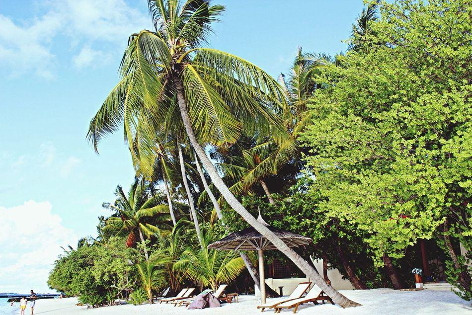 Beautiful stock photos of jamaica, Auto Post Production Filter, Beach, Cloud, Day