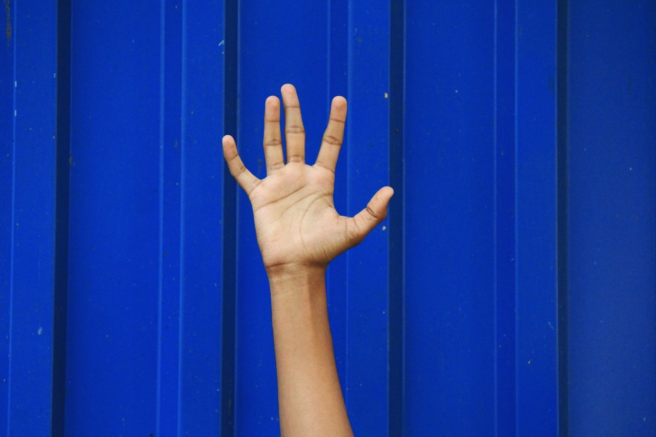 Human Hand Human Body Part Blue Freshness People Outdoors Only Men One Person Day Adults Only Adult Palm Arm Forearm Fingers