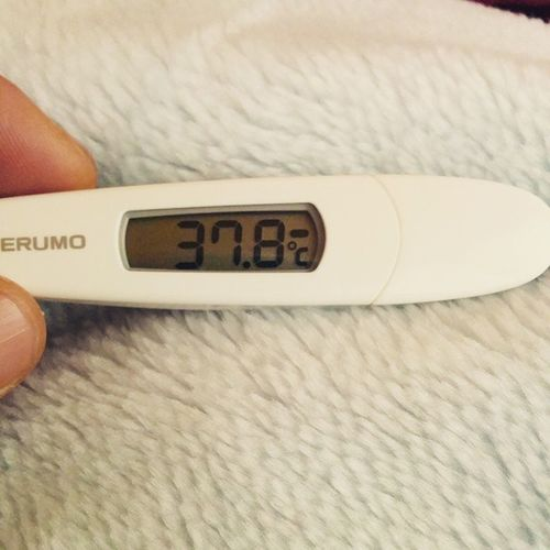 ビミョーに体温上がってきたゾ〜 風邪 発熱