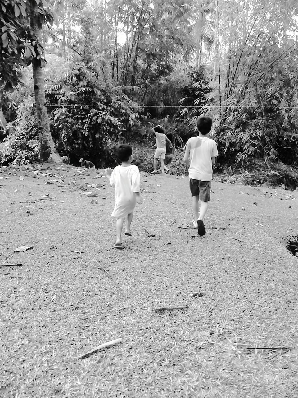 real people, rear view, tree, full length, childhood, togetherness, walking, boys, men, two people, leisure activity, nature, playing, outdoors, day, growth, lifestyles, standing, mammal, adult, people