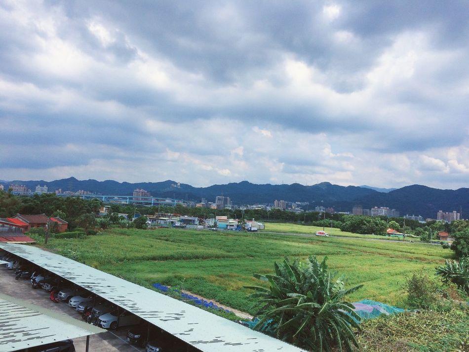 這次是回來調適心情的,每次覽觀後陽台是一片未開發的土地,在繁忙的台北,永遠有個避風港,真好!
