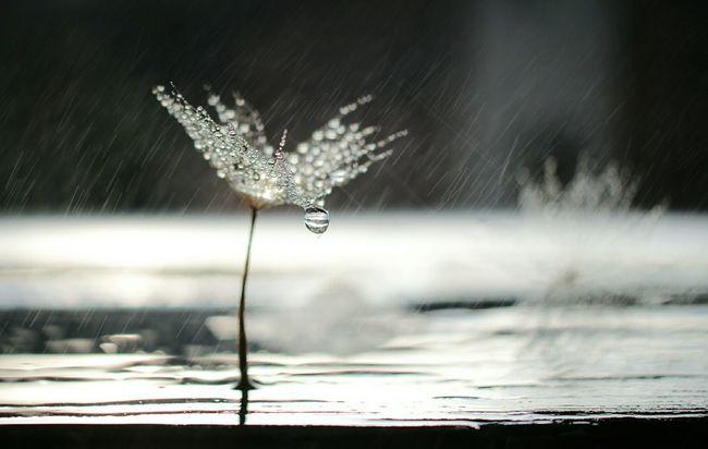 I heart weekends Kay's Bokeh Heart Water EyeEm EyeEm Best Shots Rain Getting Inspired Bokeh Photography Close-up