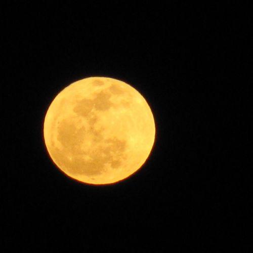Guarda che luna... Full Moon Goodnight Moon Jornalistasdeimagens Lisboalive