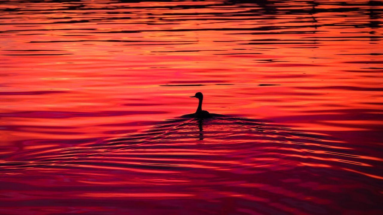 Fire on the water. Shot on Fujifilm XT-1. Fujifilm FUJIFILM X-T1 Fujiholics @bradoliverphoto @visualpixelz